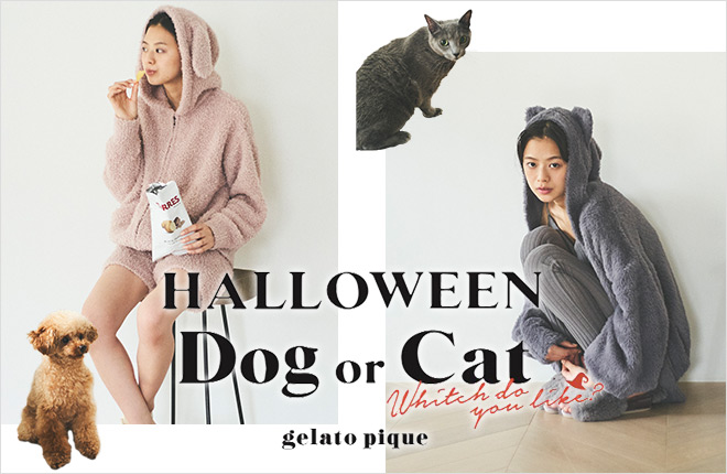 HALLOWEEN Dog or Cat