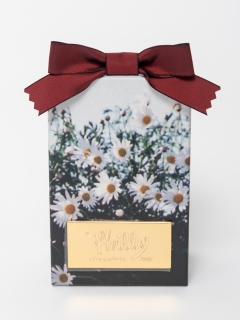 Philly chocolate/Marguerite box(MIX)/食品
